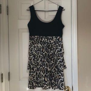 Studio I size medium cheetah and black